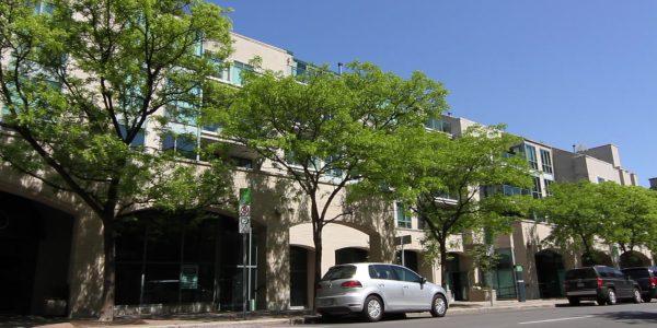 Gallery Court Ottawa